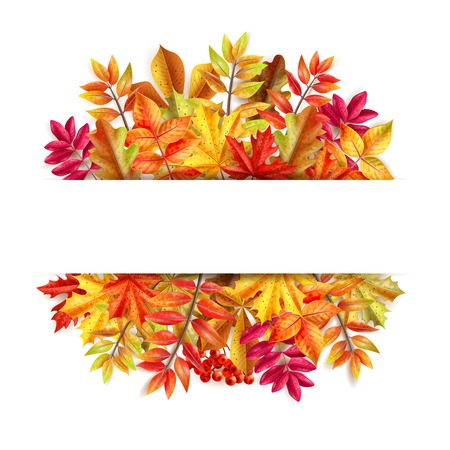 Thanksgiving day composition with colorful leaves frame and place for message at the center vector illustration