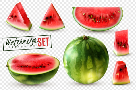 Realistic watermelon set with whole half quarter slices and bite size pieces transparent background isolated vector illustration