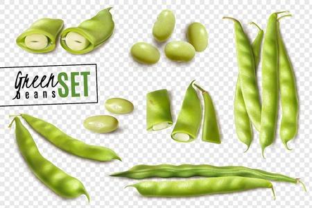 Bio-grüne Bohnen des frischen Bauernmarktes realistisches Set mit transparenter Hintergrundvektorillustration der ganzen und geschnittenen Schoten Vektorgrafik