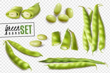 Fresh farmer market organic green beans realistic set with whole and cut pods transparent background vector illustration