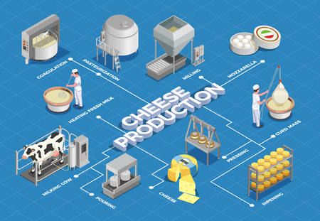 Cheese production isometric flowchart illustrated process from milk yield and pasteurization to fermenting pressing and ripening vector illustration Illustration