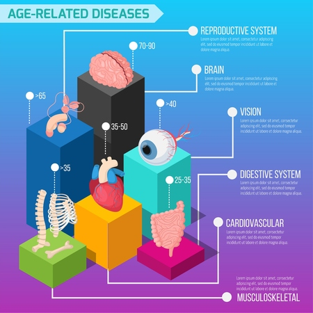 Age related human diseases infographics layout with statistic of defeat of internal organs and biological systems isometric vector illustration