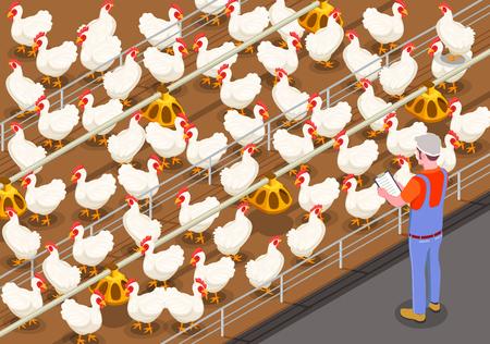 Fondo isometrico del pollame con il membro del personale nell'allevamento di polli che controlla l'alimentazione degli uccelli illustrazione vettoriale Vettoriali