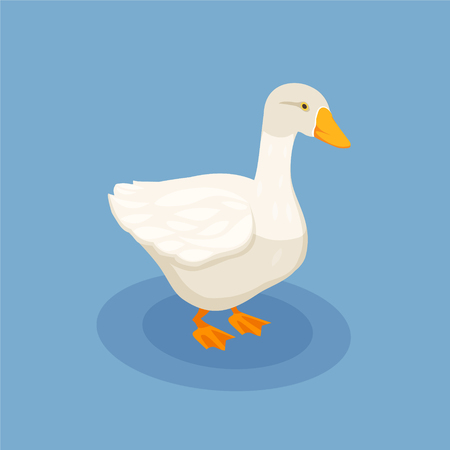 Poultry isometric poster with white goose icon on blue background vector illustration