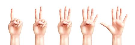 Manos de personas realistas contando de uno a cinco aislados en la ilustración de vector de fondo blanco
