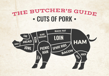 Butchery diagram with silhouette of pig and cuts of pork on background of old paper vector illustration Standard-Bild - 111824992