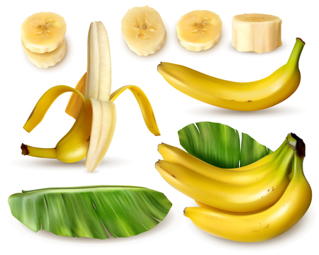 Realistic banana set with various isolated images of fresh banana fruit with skin leaves and slices vector illustration Stock Illustratie