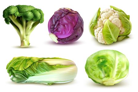 Realistische set met verse witte kool broccoli chinese bladeren bloemkool geïsoleerde vectorillustratie