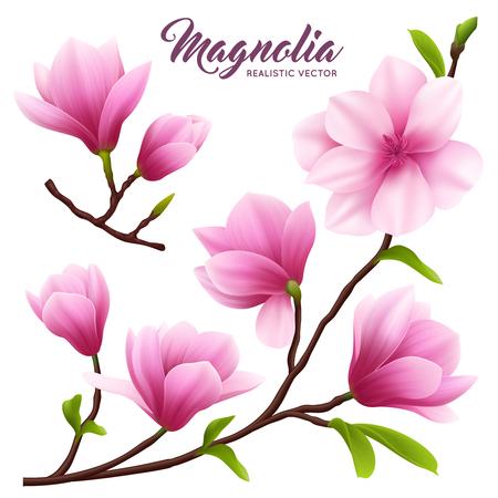 Rosa realistische Magnolienblumenikone stellte Blumen auf Zweig mit Blättern schöne und nette Vektorillustration ein
