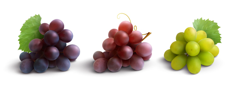 Grapes realistic composition with red rose and white grapes isolated vector illustration