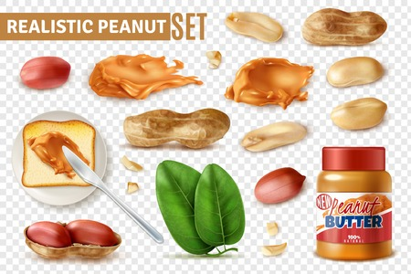 Realistic peanut on transparent background set with isolated arachis beans with shell and jar of butter vector illustration