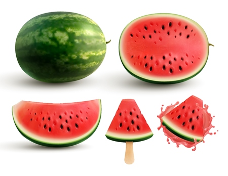 Ripe juicy watermelon whole half quarter segment and bite sized pieces on stick realistic set vector illustration