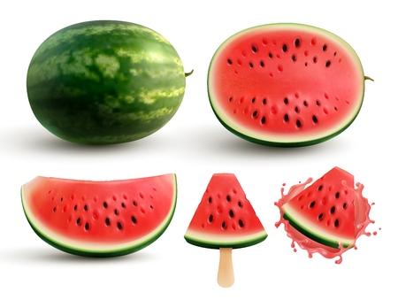 Ripe juicy watermelon whole half quarter segment and bite sized pieces on stick realistic set vector illustration