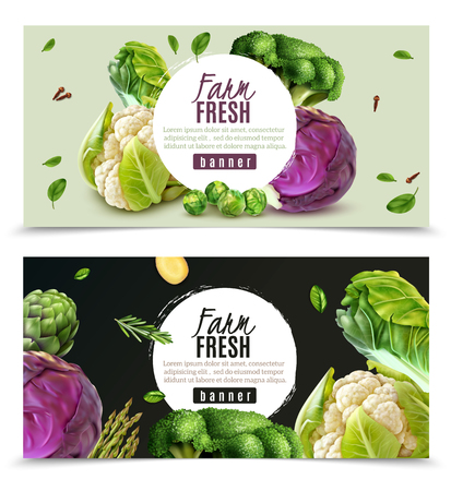 Horizontal banners set with realistic fresh farm vegetables such as cabbage cauliflower broccoli brussels sprouts isolated vector illustration Illustration