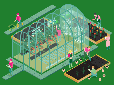 Greenhouse production isometric composition with glasshouse facility workers planting seedlings growing flowers vegetables hydroponic system vector illustration