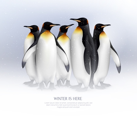 King penguins colony in snowy environment composition realistic background poster for great winter vacation ideas vector illustration
