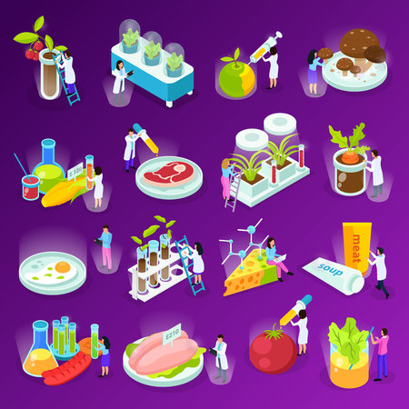 Set of isometric icons with artificial food scientists and laboratory equipment on purple background isolated vector illustration Illustration