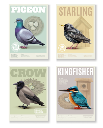 Birds banners collection with four rectangular vertical banners colourful images of various birds and editable text vector illustration Stock Illustratie