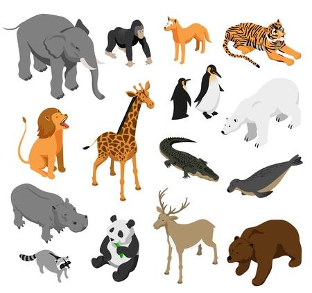 Gli animali erbivori e predatori dello zoo hanno messo delle icone isometriche sull'illustrazione di vettore isolata fondo bianco Vettoriali