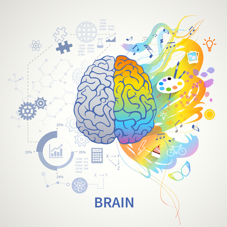Brain functions concept infographic symbolic depiction with left side logic science mathematics right arts creativity vector illustration Çizim