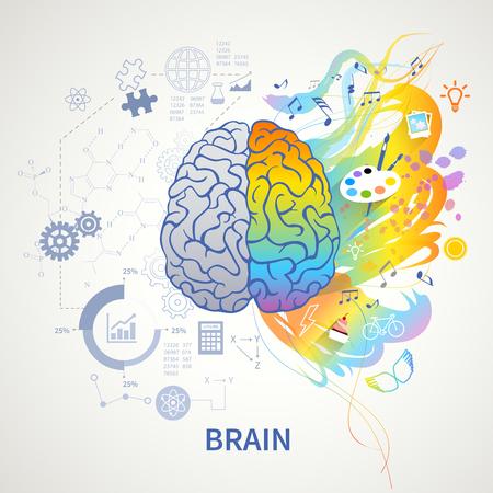 Representación simbólica de infografía del concepto de funciones cerebrales con ilustración de vector de creatividad de artes de derecha de ciencia de lógica de lado izquierdo