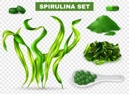 Spirulina realistic set with seaweeds  supplement capsules tablets green powder chopped dried algae transparent background vector illustration Иллюстрация