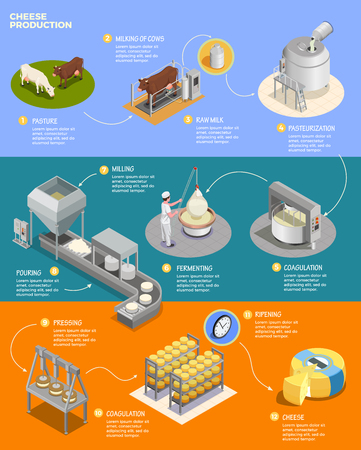Cheese production isometric infographics layout with eleven phases of cheese preparation from raw milk vector illustration