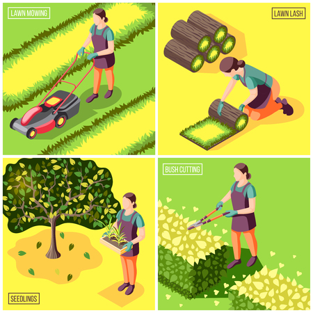 Landscaping isometric design concept with laying and mowing of lawn bushes trimming and seedlings isolated vector illustration