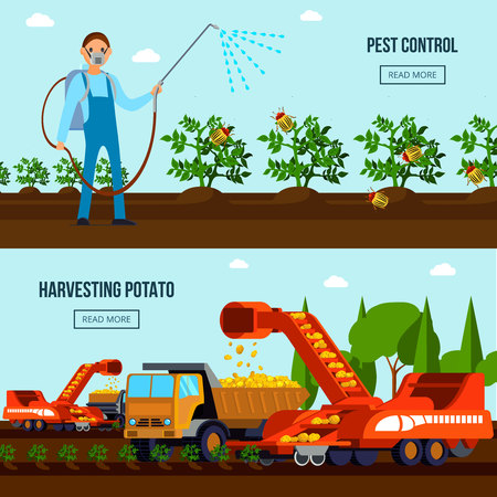 Potato cultivation flat compositions with pest control and agricultural vehicles during harvesting isolated vector illustration