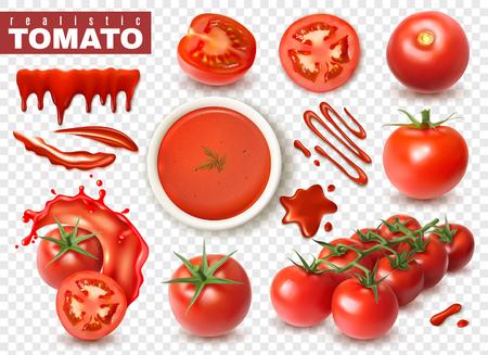 Realistische Tomate auf transparentem Hintergrund mit isolierten Bildern von ganzen Fruchtscheiben, Spritzern von Saftvektorillustration