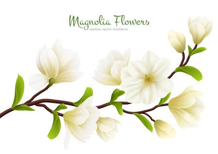 Farbige realistische weiße Magnolienblumenzusammensetzung mit grüner Kalligraphiebeschreibungsvektorillustration Vektorgrafik