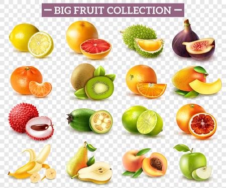 Conjunto realista de varios tipos de frutas con naranja kiwi pera limón lima manzana aislada sobre fondo transparente ilustración vectorial