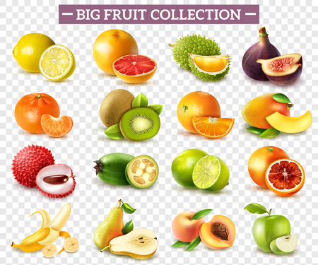 Realistic set of various kinds of fruits with orange kiwi pear lemon lime apple isolated on transparent background vector illustration Vettoriali