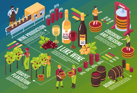 Winery isometric flowchart drink stages production from vineyard till wine aging on green background horizontal vector illustration