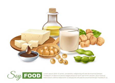 Cartel de productos alimenticios de soja con vainas de frijoles, leche y carne, tofu, aceite vegetal, ilustración vectorial