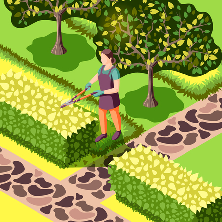 Gardener with tool during trimming of bushes beautiful landscaping with trees and stone sidewalks isometric vector illustration