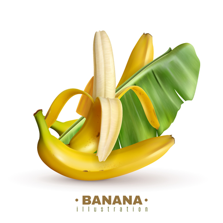 Realistic banana background with editable text and realistic images of banana fruits with skin and leaves vector illustration Foto de archivo - 126337858