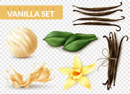 Ensemble réaliste de vanille avec une cuillère à crème glacée shake splash fleur haricots secs feuilles fond transparent illustration vectorielle Vecteurs