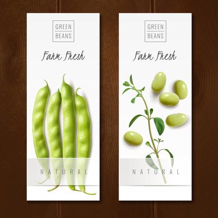 Les gousses de haricots verts biologiques frais du marché agricole de choix sain offrent 2 bannières verticales réalistes isolées illustration vectorielle Vecteurs