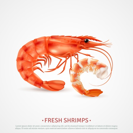 Fresh cooked shrimps peeled deveined and with shell on closeup realistic seafood image advertising poster vector illustration