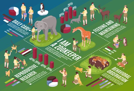 Isometric zoo workers horizontal flowchart composition with infographic icons text and images of people and animals vector oustration Ilustração