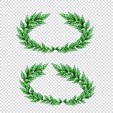 Set of two isolated green laurel wreaths in realistic style on transparent background vector Illustration