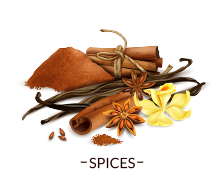 Spices realistic composition with vanilla flower and dried beans star anise cinnamon powder and sticks vector illustration