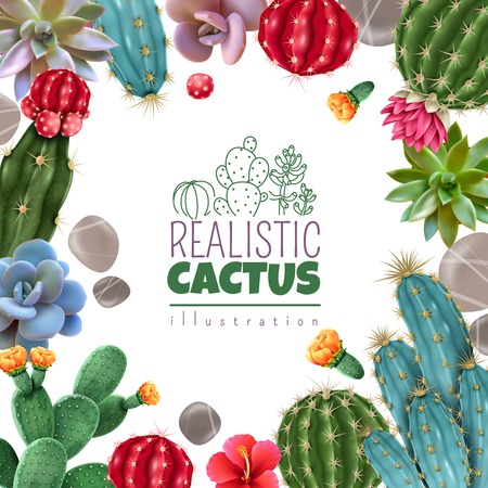 Blooming cacti and popular succulents varieties easy care decorative indoor plants realistic colorful square frame vector illustration