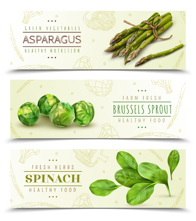 Farm fresh green leafy vegetables 3 realistic horizontal banners set with spinach asparagus brussels sprouts vector illustration Standard-Bild - 117080192