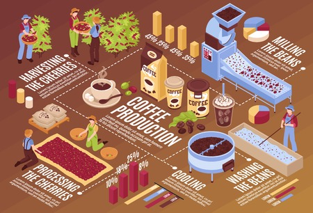 Kompozycja poziomego schematu blokowego produkcji kawy izometrycznej z izolowanymi elementami infografiki roślinami z opakowaniami fasoli i ilustracją wektorową ludzi Ilustracje wektorowe