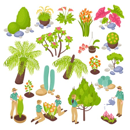 Isometric botanical garden greenhouse set with isolated images of various plants trees and flowers with people vector illustration