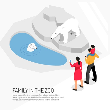 Family in zoo during watching polar bears on white background isometric vector illustration