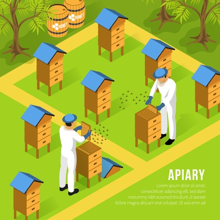 Beekeepers in protective clothing at apiary during work with hives and swarms of bees isometric vector illustration