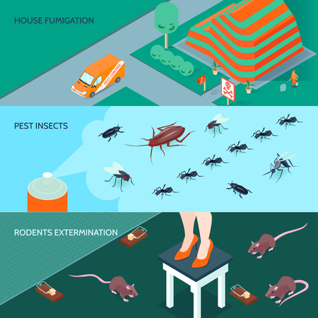 Domestic disinfection horizontal banners set with methods of insects and rodents extermination 3d isometric isolated vector illustration